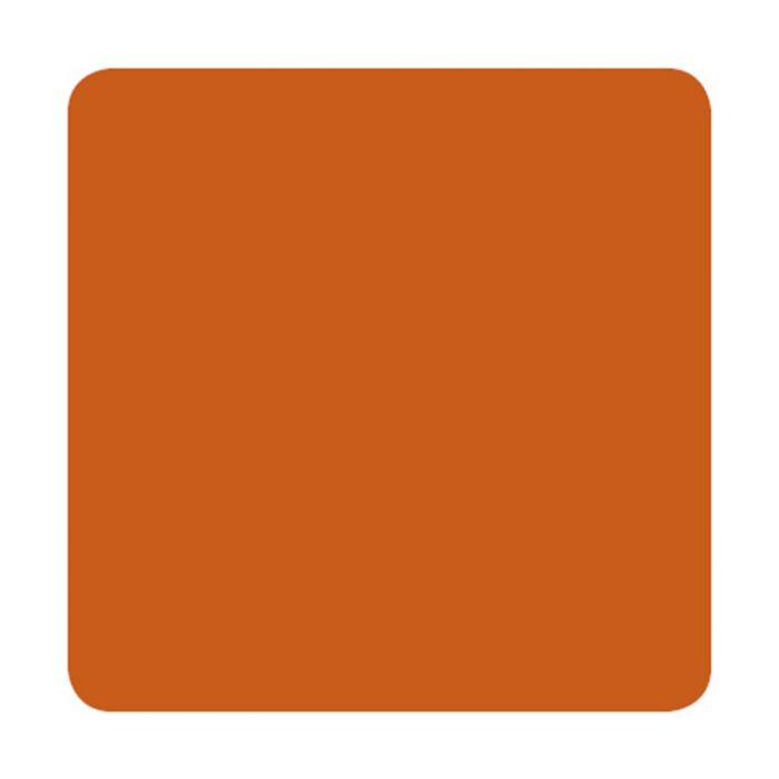 Eternal Ink Muted Earth Tones Burnt Orange 30ml (1oz)
